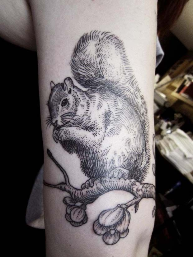 #tattoo by Otto http://www.ottotto.it/: Favorite Tattoo, Animal Tattoos, Squirrel Tattoos, Tattoo Inspiration, Body Art, Otto Ottorino, Otto D Ambra