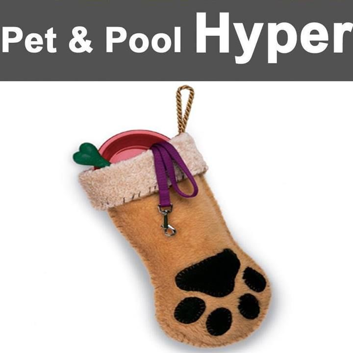 Great Christmas specials at Pet & Pool Hyper Boksburg, Christmas stocking for Cat only R55 and Christmas stocking for dogs only R49. Don't miss out on these great specials. #specials #stockings #Christmas