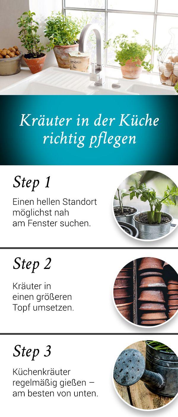 Berühmt Ada Küchenspüle Bilder - Ideen Für Die Küche Dekoration ...