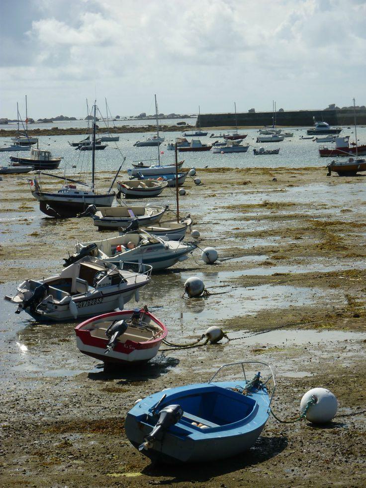 Les 869 meilleures images propos de bretagne mer et for Agence paysage bretagne