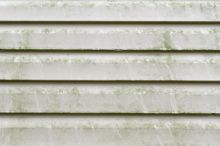 How To Remove Mold From Vinyl Siding Vinyls To Remove And How To Remove