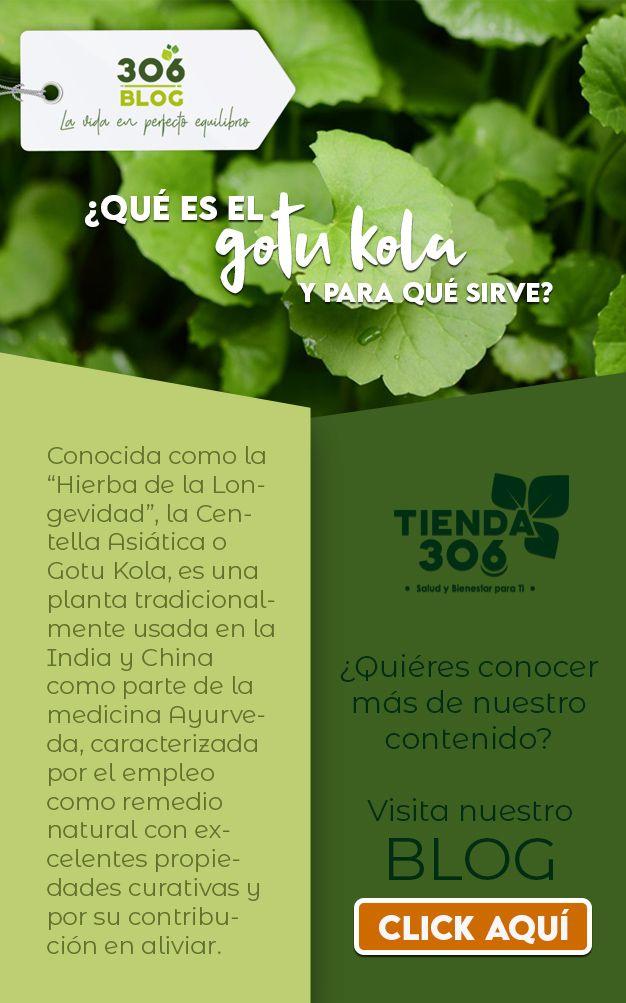 Pin En Blog306