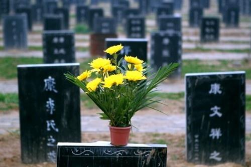 """Ladrones de tumbas venden cadáveres para """"matrimonios fantasma"""""""