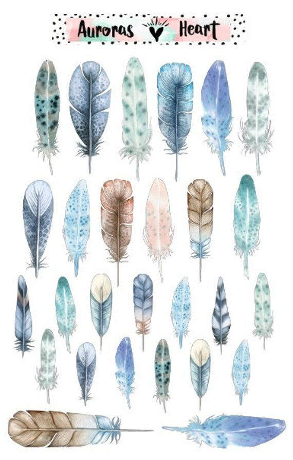 Feathers Blue Soft Watercolor Planner Stickers Boho Feder