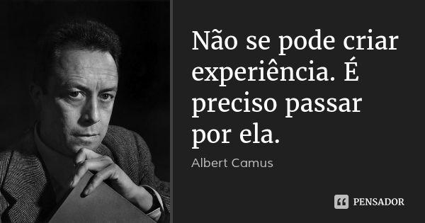 Não se pode criar experiência. É preciso passar por ela. — Albert Camus