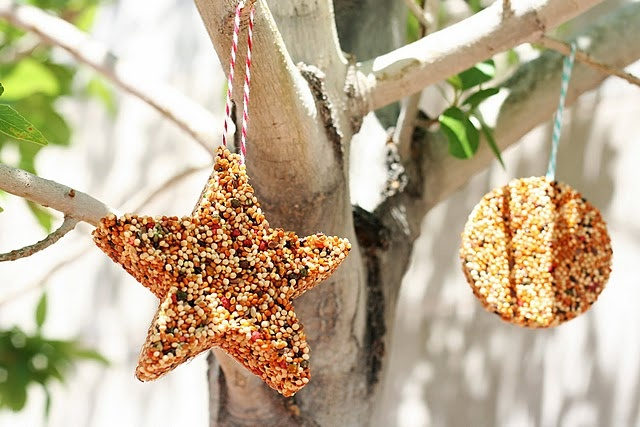 You could use different holiday cookie cutters & have seasonal bird feeders :)Summer Crafts, Ideas, Birds Food, Birds Feeders, Bird Feeders, Kids Crafts, Camps Crafts, Cookies Cutters, Cookie Cutters