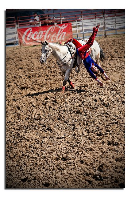 1000 Images About Trick Riding Amp Horse Vaulting On