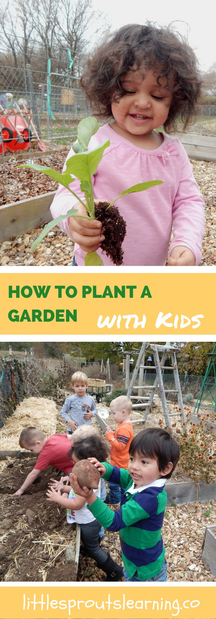 The garden is a wonderful place for kids to learn, but how in the world do I plant a garden that kids work in and eat from? It can be a challenge.