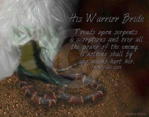59 Best Warrior Bride Love Warrior Images On Pinterest