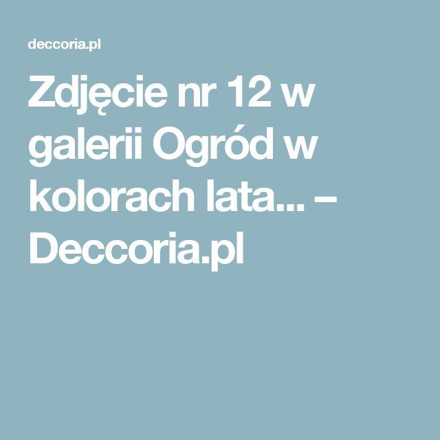 Zdjęcie nr 12 w galerii Ogród w kolorach lata... – Deccoria.pl