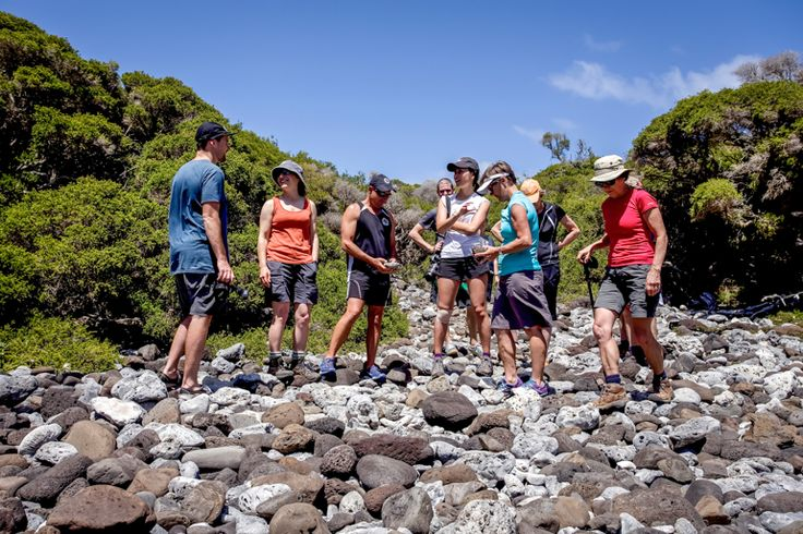 Adventure group at the Old Gulch | Lord Howe Island
