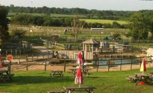 Not sure what to do this #Father'sDay?  Dad's go free at Blackberry Farm in Lewes #Sussex!