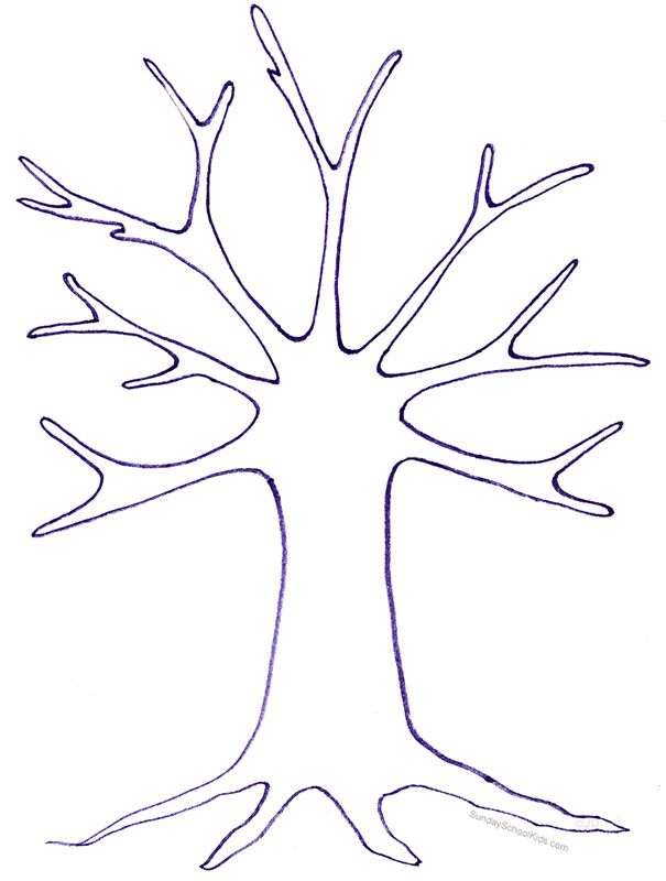 Best 25 tree outline ideas on pinterest simply image for Preschool family tree template