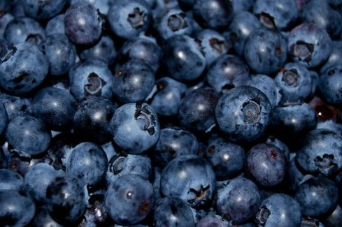 Poland is third in the world's production blueberries | Link to Poland