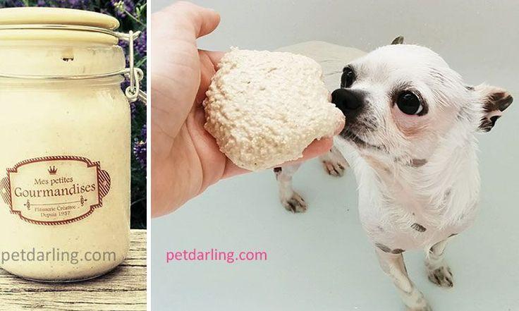 CHAMPU PARA PERROS CASERO - Haz tu propio champu para perros casero (Fotos & Video). Especial para perros con piel sensible.