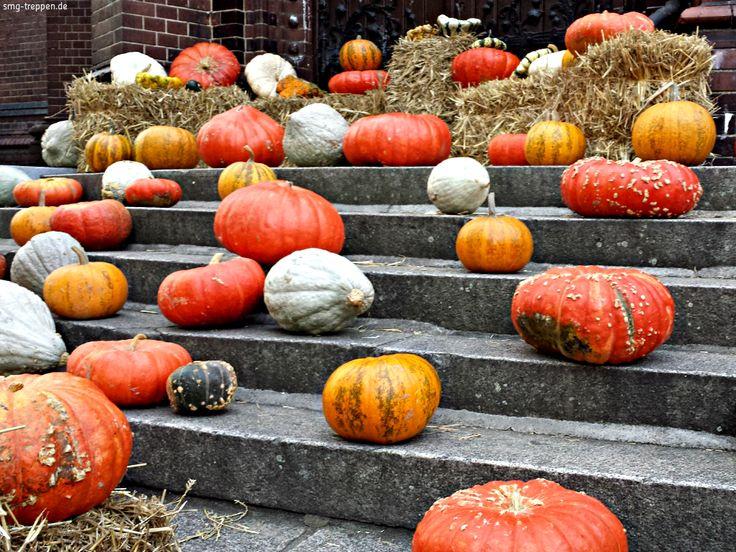 Kürbistreppe - http://smg-treppen.de/kuerbistreppe/ Der Sommer findet langsam sein Ende für dieses Jahr und der goldene Oktober hat begonnen. Die Kürbistreppe haben wir gestern in Berlin Schöneberg gesehen. Wir wünschen allen eine schöne Woche und einen farbenfrohen Herbst.