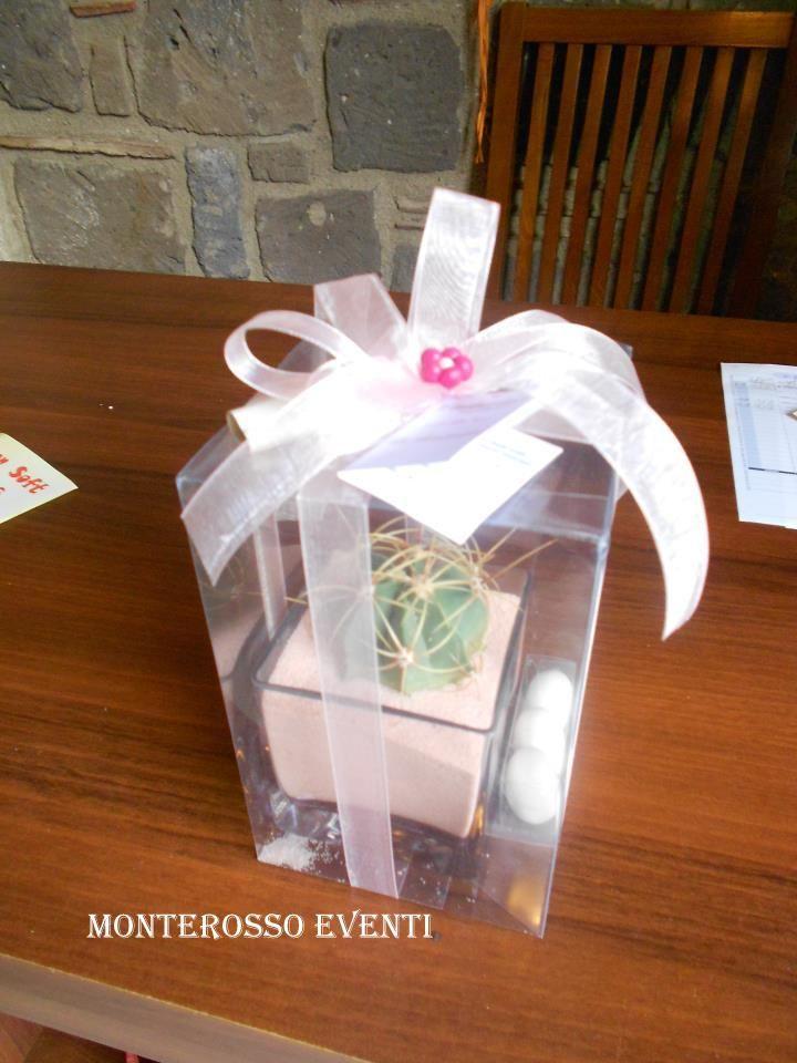 Piantina grassa con vasetto di vetro e sabbia rosa