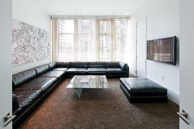 Long leather couches