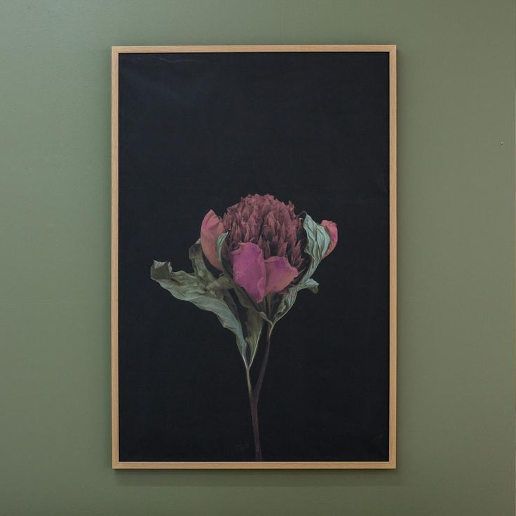 Just South West Red Peonie Print