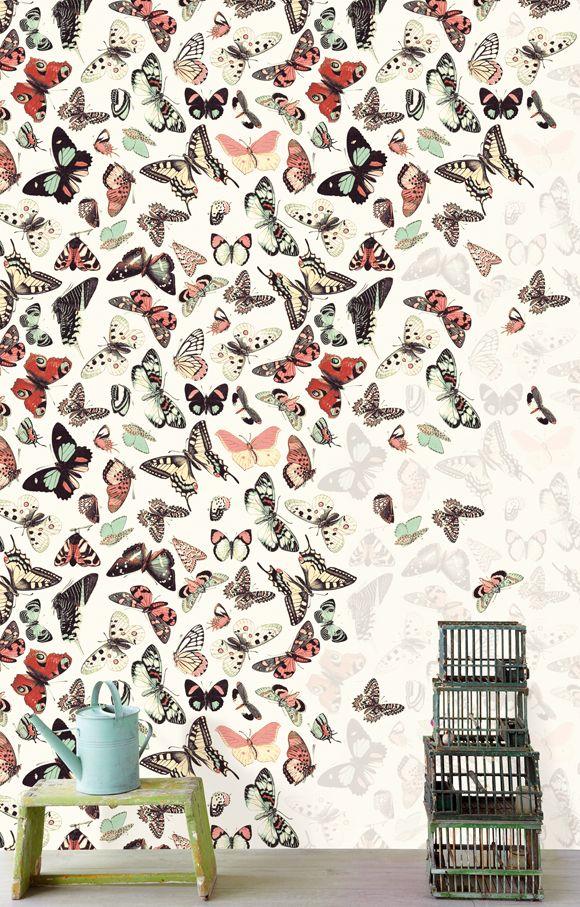 In het Behang van de Week vind je dit keer een behang met vlinderdessin uit de nieuwe collectie Wallpower Wonders van Eijffinger.