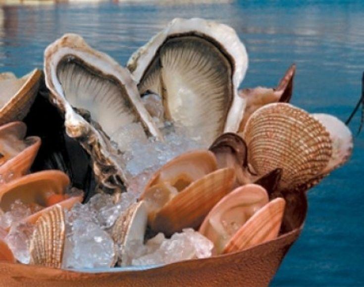 Καστελόριζο: Θησαυροί της θάλασσας