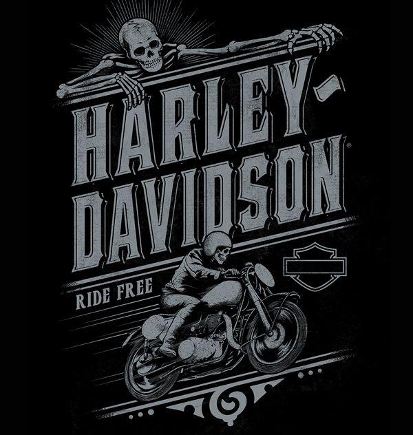 Harley Davidson Wallpaper: 1000+ Images About HARLEY DAVIDSON €�°♢ On Pinterest