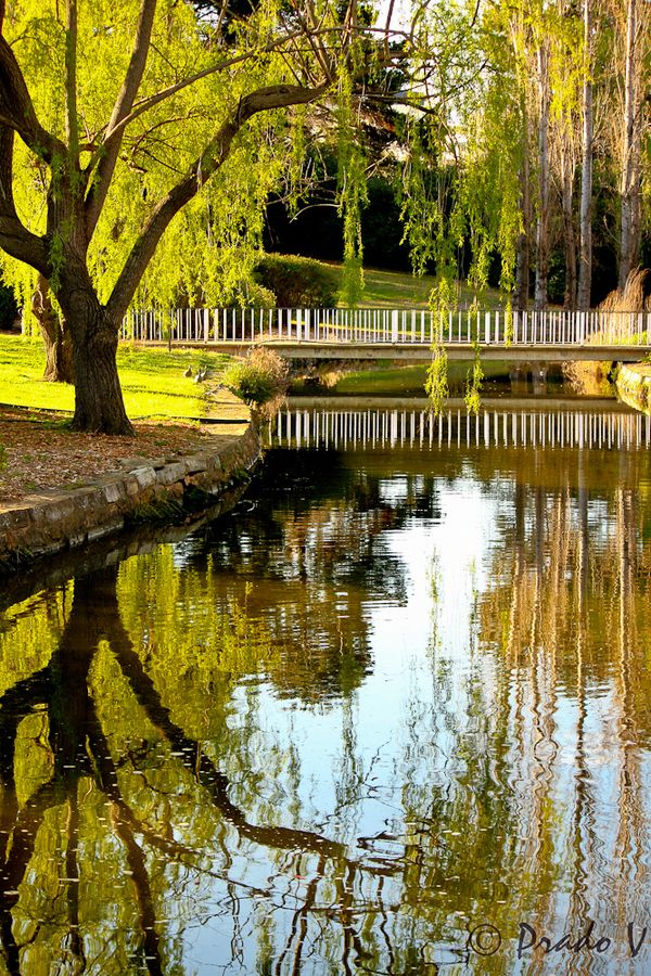 Reflections - Canberra - Australia