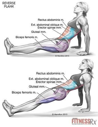Strengthen core and lower body and save your back with one exercise-reverse plank
