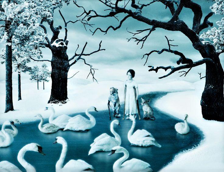 Among Swans, 2011. Helena Blomqvist. Pigment print