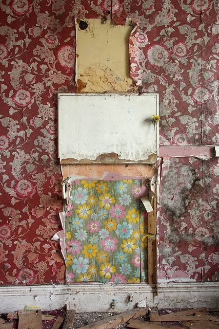 Wallpaper in abandoned homes that looks like this: ripped, torn, layers ripped off to reveal wallpaper underneath, creeps me out soooooo bad. I don't know why. It's WALLPAPER.