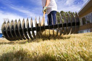 Chippers, shredders and other ways to dispose of yard waste