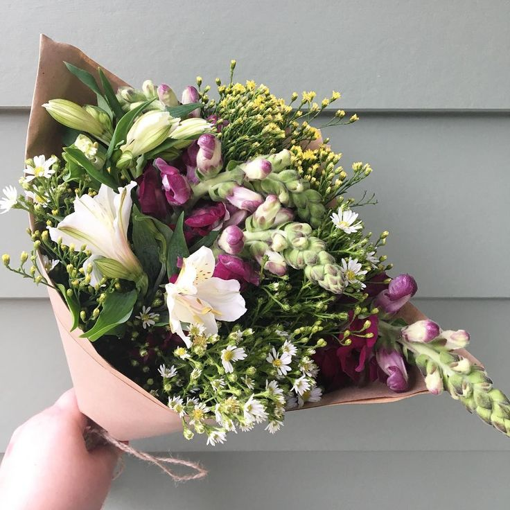 16 best The Posy Co Sunshine Coast Flowers Delivery images on