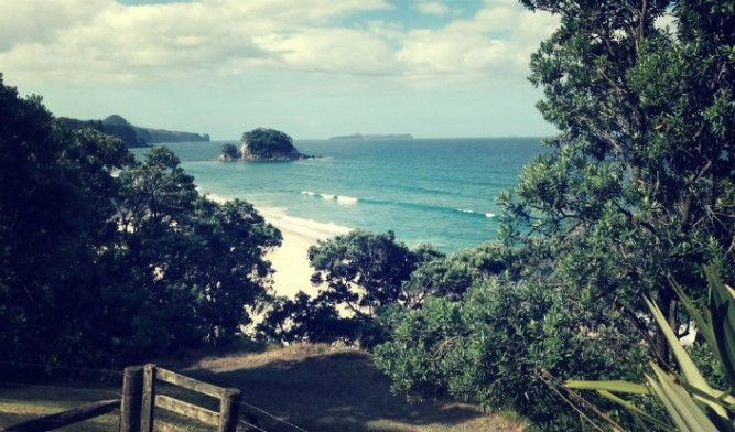 Find out the best facts about New Zealand so you can experience places like this little gem in the Coromandel called Onemana.
