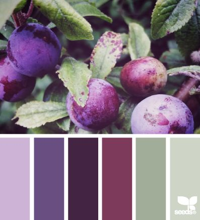 Purple, plum, and green color palette.