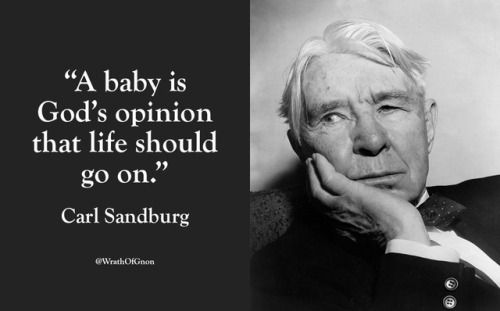 """""""A baby is God's opinion that life should go on."""" — Carl Sandburg"""