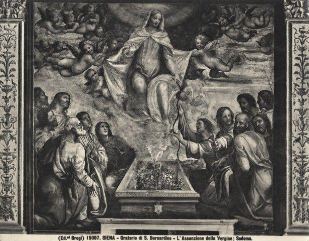 Sodoma, assunzione - Oratorio della Compagnia di San Bernardino - Wikipedia