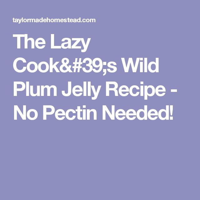 The Lazy Cook's Wild Plum Jelly Recipe - No Pectin Needed!