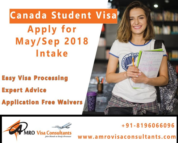 student visa essay 5 things to do before studying abroad: 3 applying for a study abroad student visa the application process for a study abroad student visa can be confusing because it's different for different countrieswith that being said, if you follow these basic guidelines as well as those from the state department of the country where you're going to be studying, you should have no trouble.