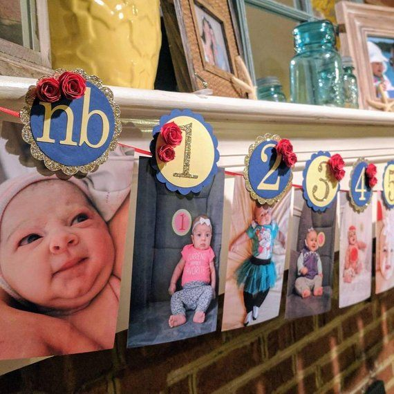MONTHLY PHOTO BANNER, Beauty and the Beast First Birthday Party, 1st Year Picture Display, Red Roses