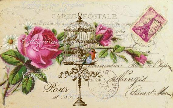 Digital grande descargar collage de postales Vintage de 1897 París Est. Rosas Carte Postale aves jaula comprar 3 obtener una imagen gratis