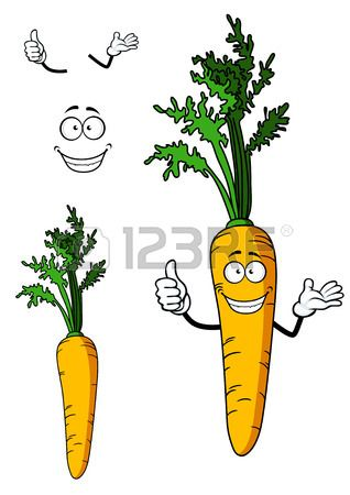 Fresh whole carrot vegetable with green leafy top and a happy smiling face, cartoon illustration Illustration