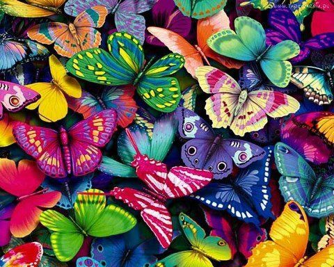 Butterflies signify new life and change. Transforming from something ordinary into something beautiful.