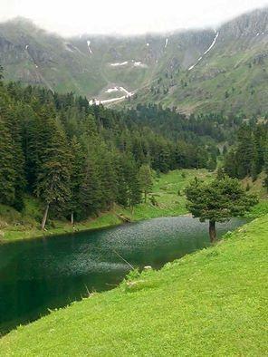 ŞAVŞAT / Pınarlı Köyü Balık Gölü Aşktır Karadeniz