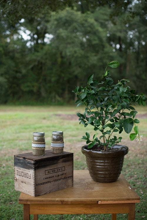 Brides: A Casual Outdoor Wedding with a Country Twist in Brooksville, FL