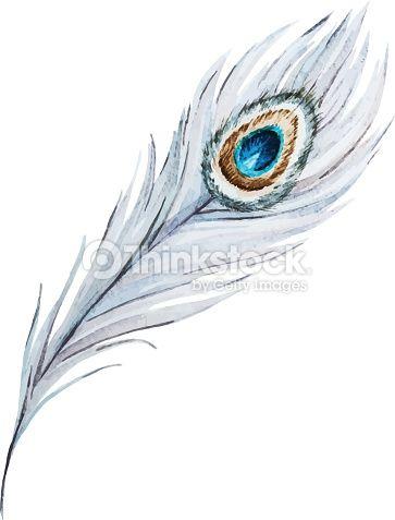 Vector Art : Watercolor peacock feather