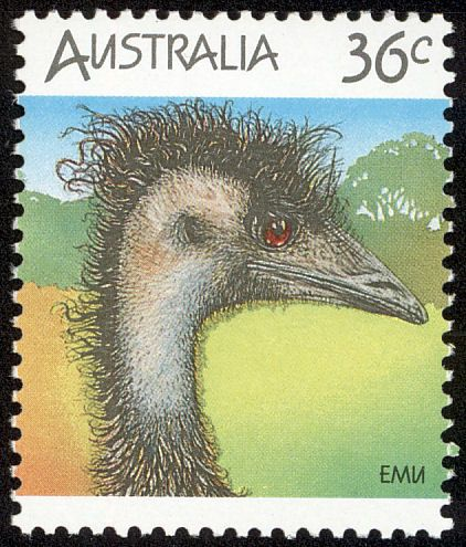 Emu, (Dromaius novaehollandiae)  Australian wildelife birds . Post stamp from Australia,1986