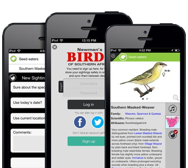 Newman's Birds App https://itunes.apple.com/us/app/newmans-birds-southern-africa/id722185873?mt=8