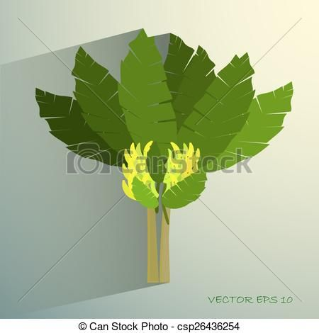 Vektor - gyönyörű, banánok, fogalom, fa, tropikus, ökológiai, banán - stock illusztráció, szerzői jogdíj mentes illusztrációk, stock clip art ikon, stock clip art ikonok, logo, line art, EPS kép, képek, grafika, grafikák, rajz, rajzok, vector kép, grafika, EPS vektor grafika