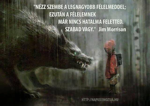 Jim Morrison gondolata a félelemről. A kép forrása: Napi Elemózsia # Facebook