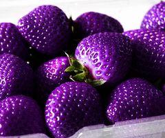 Purple? Strawberries!